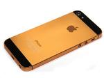 Корпус iPhone 5 Золотой/Черный